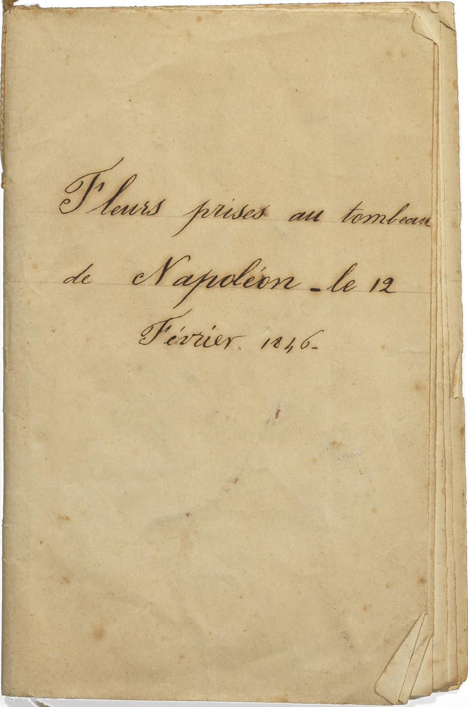 Fleurs du tombeau de Napoléon à Saint-Hélène - Patrimoine Charles-André COLONNA WALEWSKI, en ligne directe de Napoléon